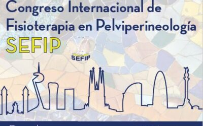 IV CONGRESO INTERNACIONAL DE FISIOTERAPIA EN PELVIPERINEOLOGIA